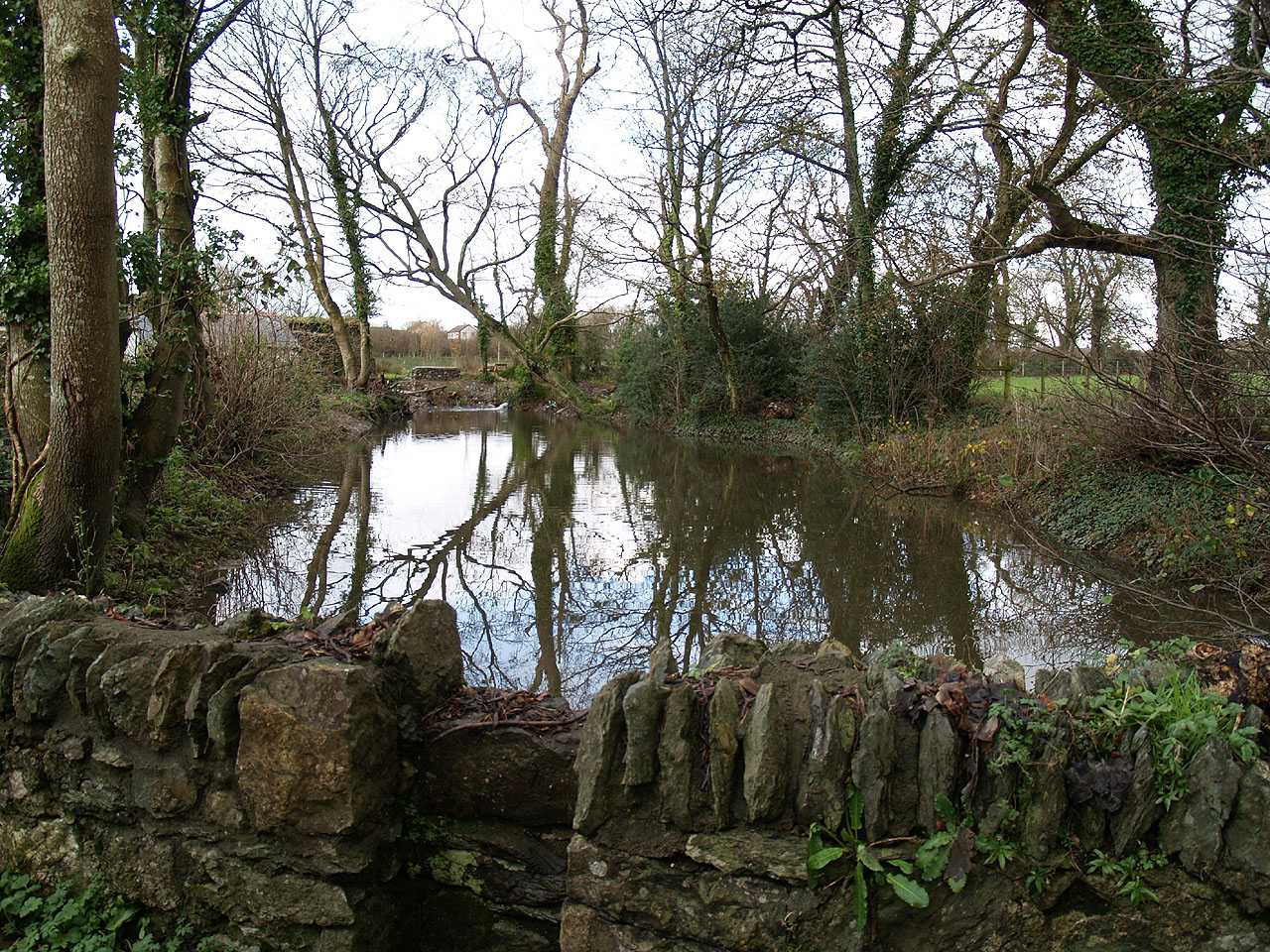 Anglesey, Llangefni Water Mill, Mill Pond