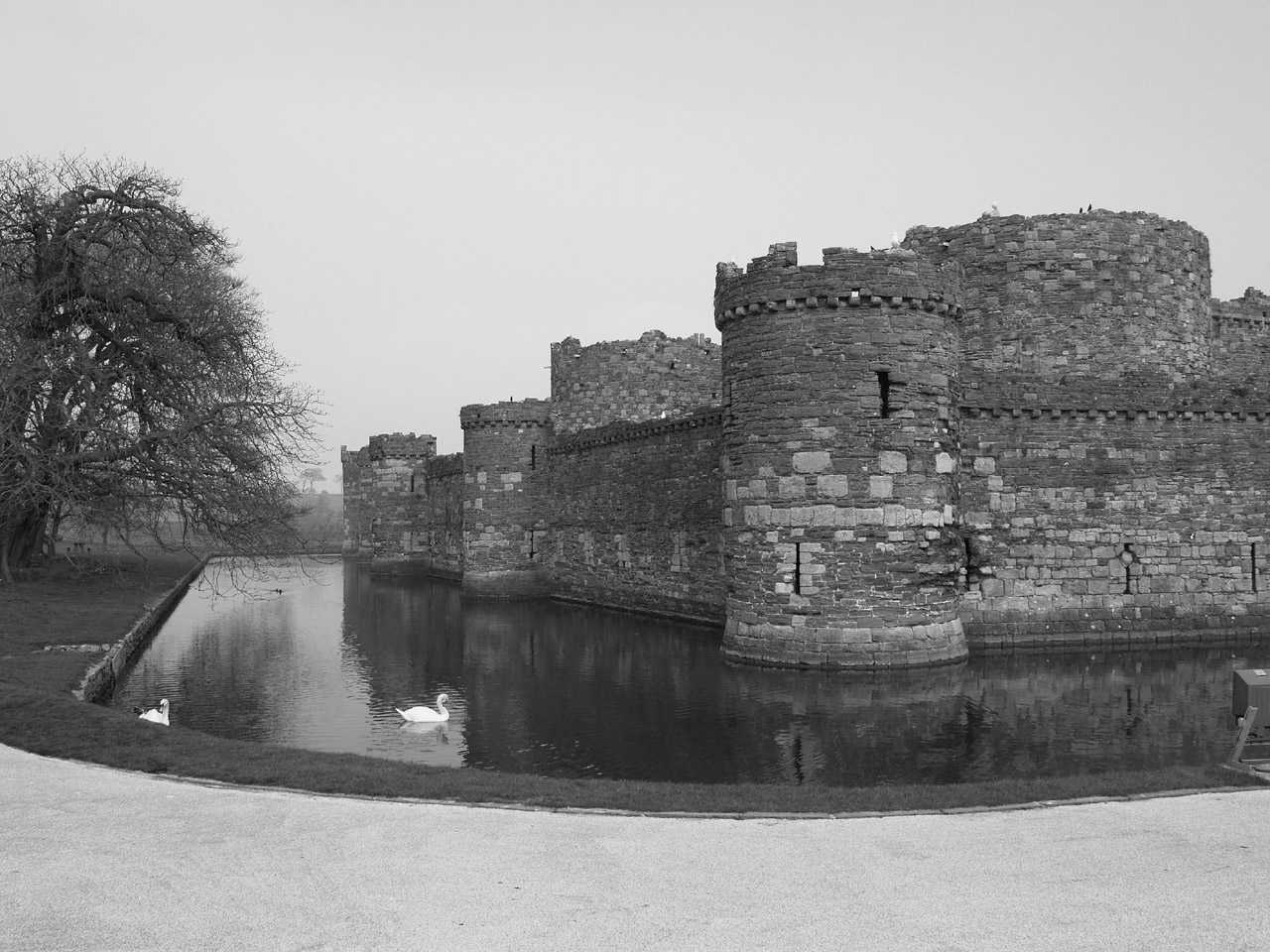 Anglesey, Beaumaris Castle - March 2009