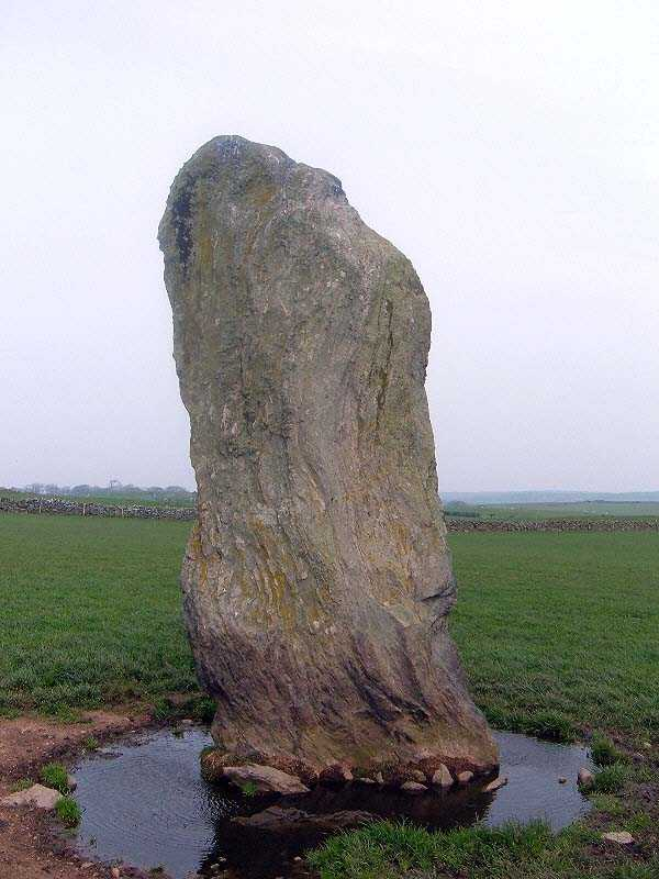 Plas Bodewryd Standing Stone - after some rain
