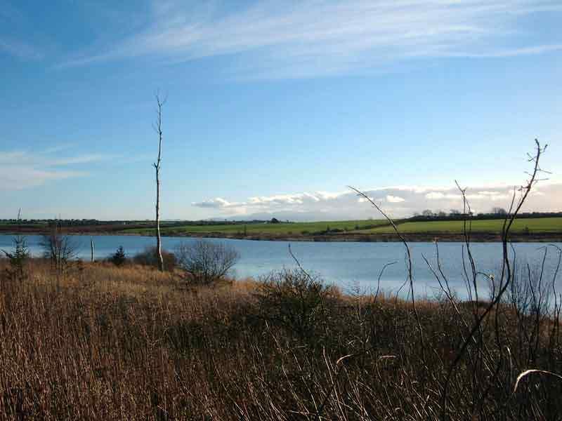 View over Llyn (Lake) Cefni